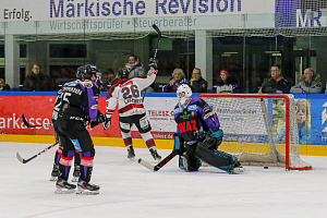 FH Eishockey Moskitos Essen Crocodiles Hamburg eol